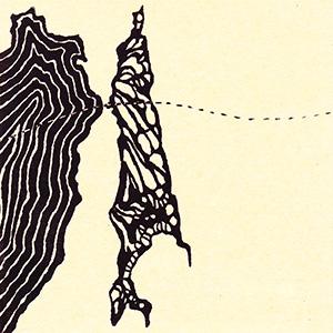 韃靼海峡と蝶